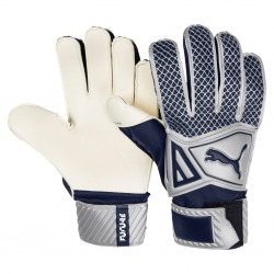 GLOVES GOALKEEPER PUMA FUTURE GRIP 2.4 Color silver-blue