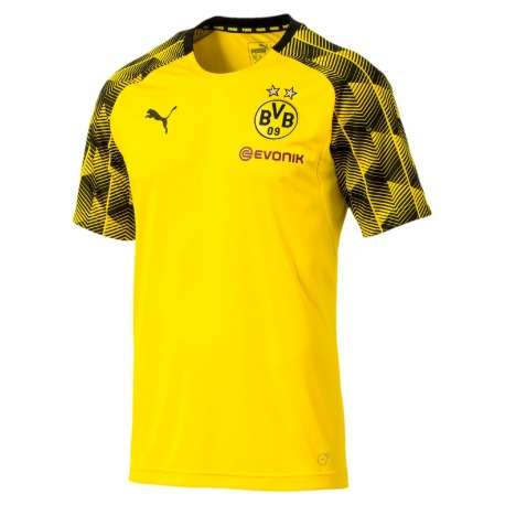 e5b1f3bfa6123 Camiseta de entrenamiento del Borussia Dortmund